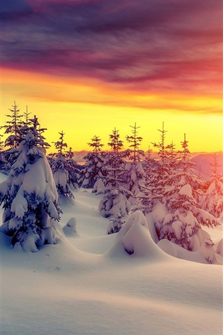 iPhone Wallpaper Sunset, winter, thick snow, trees