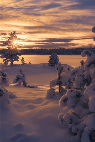 iPhone Wallpaper Norway, winter, thick snow, trees, sunset