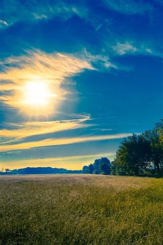 iPhone Wallpaper Sky, sun, clouds, grass, fields, trees