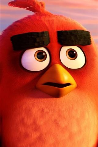 iPhone Wallpaper Angry Birds cartoon movie