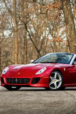 iPhone Wallpaper Ferrari red supercar, trees, road
