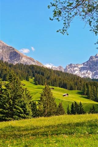 iPhone Wallpaper Switzerland, Bernese Oberland, forests, grass, mountains, blue sky
