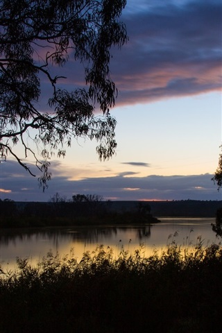 iPhone Wallpaper Australia, grass, trees, sky, clouds, river, dawn, water reflection