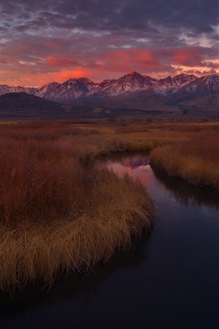 iPhone Wallpaper California, USA, Owens river, grass, mountains, sunset