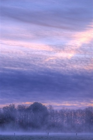 iPhone Wallpaper Morning, dawn, sunrise, clouds, fog, trees