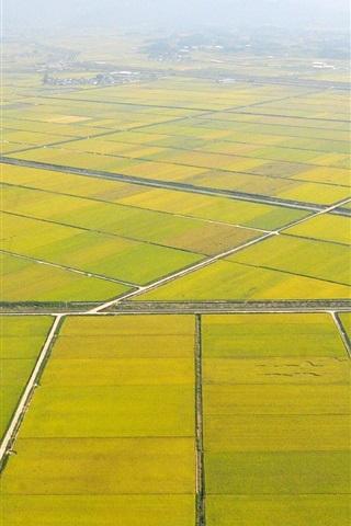 iPhone Wallpaper Rural beautiful the fields