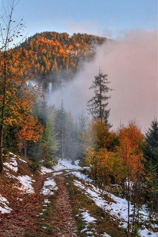 iPhone Wallpaper Autumn, mountain, footpath, snow, forest, trees, fog, dawn