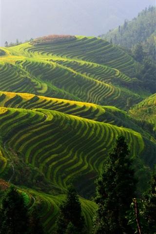 iPhone Wallpaper Longji rice terraces, China beautiful countryside