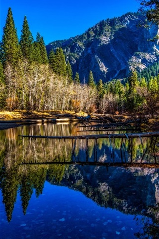 iPhone Wallpaper River, trees, mountains, water reflection, Yosemite National Park, USA
