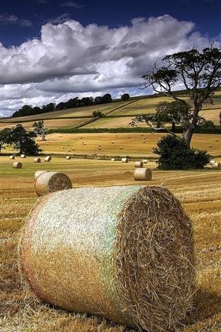 iPhone Wallpaper Summer, farm field, hay, clouds