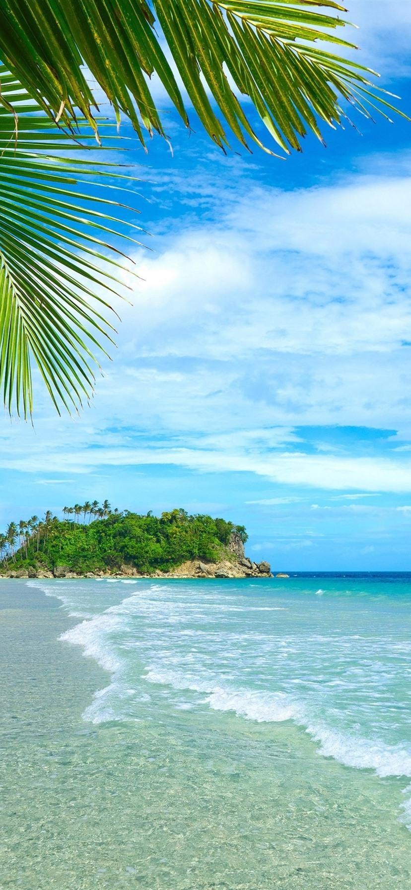 Wallpaper Blue sea and sky, beach, coast, palm trees ...