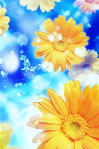 iPhone Wallpaper Gerbera, flowers, petals, water, blue background