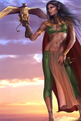iPhone Wallpaper Gryphon lady, elf, warrior, birds, sunset, fantasy girl