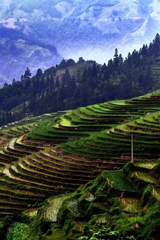 iPhone Wallpaper Jiaban Terraces, China Guizhou, mountains, trees, fields