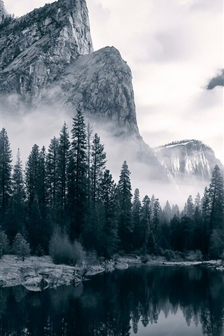 iPhone Wallpaper Merced River, Yosemite National Park, river, valley, trees, dawn, USA