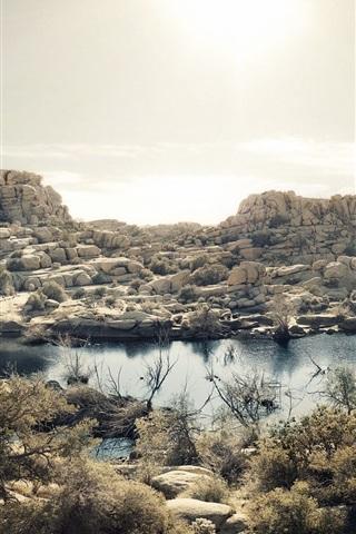 iPhone Wallpaper Mojave Desert, lake, grass, rocks, Joshua Tree National Park, California, USA