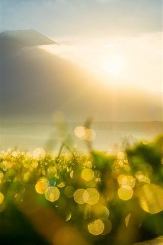 iPhone Wallpaper Mountain, sun rays, sunrise, grass, dew, flare, bokeh
