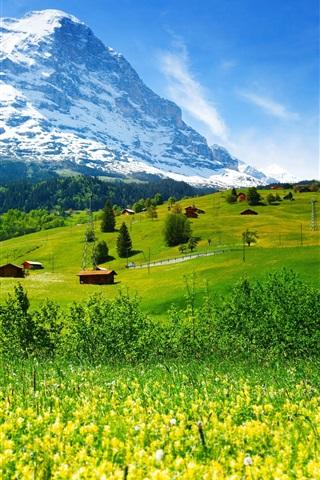iPhone Wallpaper Switzerland, mountains, glacier valley, grass, wildflowers, house