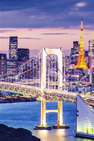 iPhone Wallpaper Tokyo, Japan, beautiful city night, skyscrapers, bay, bridge, illumination