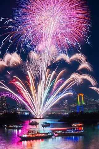 Tokio Stadt Feuerwerk Schöne Nacht Bucht Brücke
