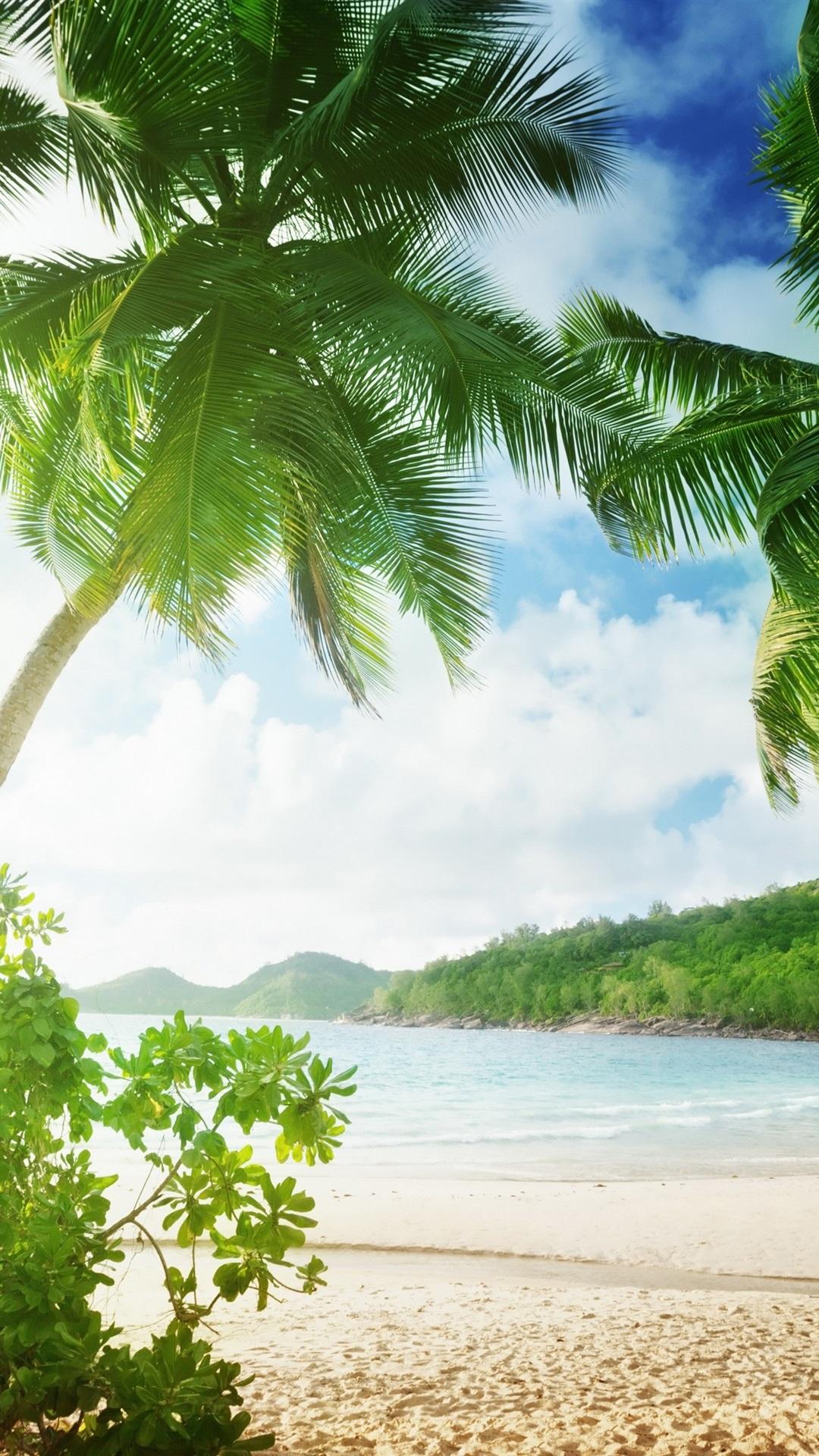 トロピカルビーチ ヤシの木 砂 海 海岸 雲 1080x19 Iphone 8 7 6 6s Plus 壁紙 背景 画像