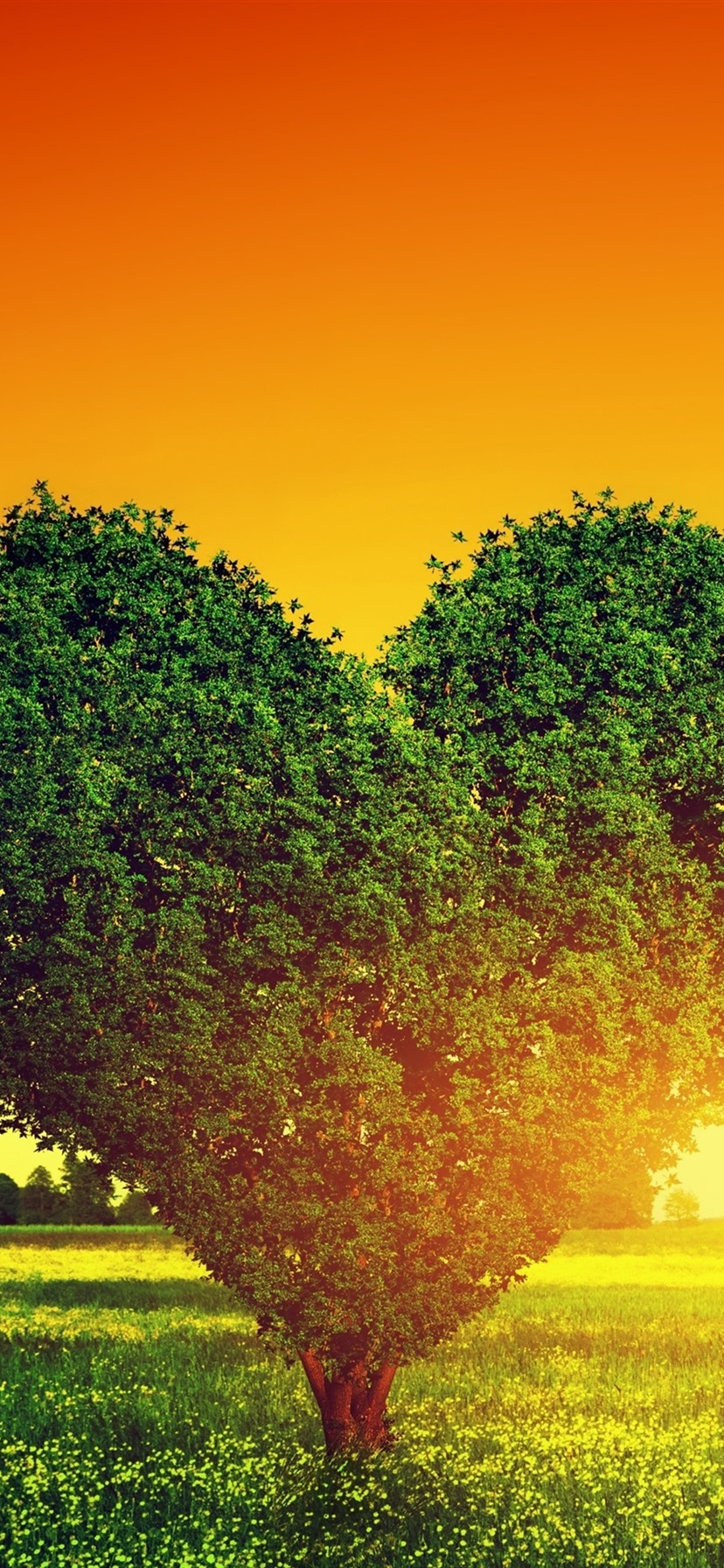 Wallpaper Two Love Hearts Trees Grass Sunset 3840x2160