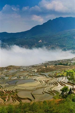 iPhone Wallpaper Yuanyang terraces, China Yunnan, beautiful view, fog, mountains