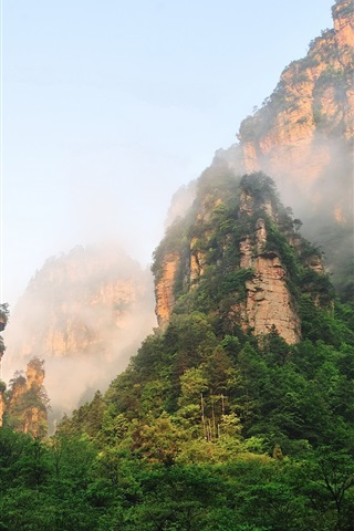 iPhone Wallpaper Zhangjiajie beautiful mountain scenery, cliffs, fog, forest, China