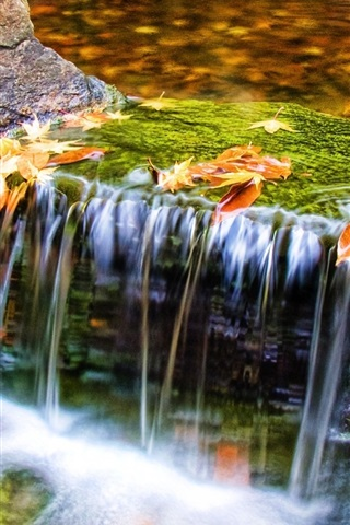 iPhone Wallpaper Autumn nature, stream, water, leaves