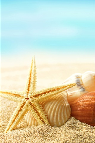 iPhone Wallpaper Beach, seashells, starfishes, sunshine, summer