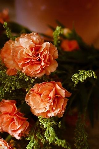 iPhone Wallpaper Bouquet flowers, carnations