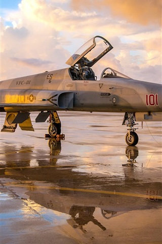 iPhone Wallpaper F-5N Tiger II fighter aircraft