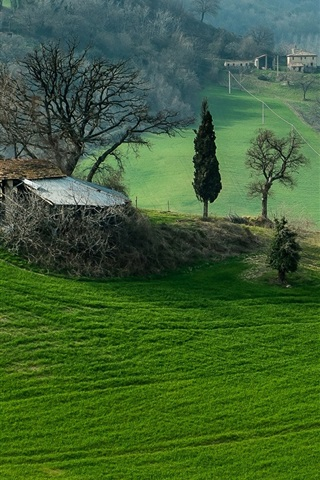 iPhone Wallpaper Italy, Campania, mountains, field, trees, grass, house