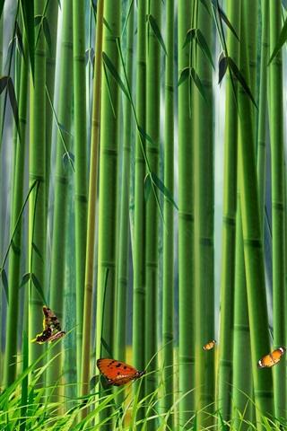 iPhone Wallpaper Bamboo forest, butterflies, grass