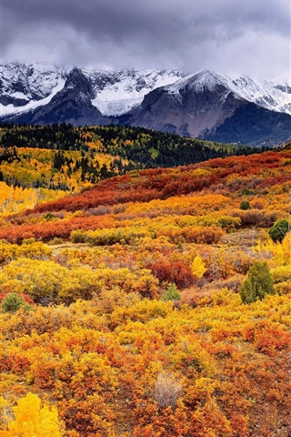 iPhone Wallpaper Beautiful autumn nature landscape, trees, mountains, clouds