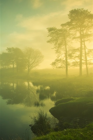 iPhone Wallpaper Beautiful dawn scenery, trees, lake, mist, sunrise, blurry