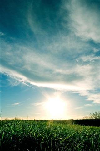 iPhone Wallpaper Blue sky, clouds, grass, sunset