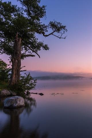 iPhone Wallpaper Calm lake, fog, rocks, trees, morning