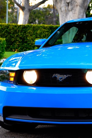 iPhone Wallpaper Ford Mustang GT blue car front view