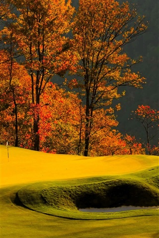 iPhone Wallpaper Forest, trees, grass, lawn, golf, autumn