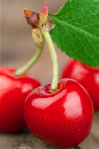 iPhone Wallpaper Fresh red cherries macro photography
