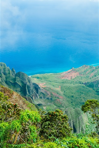 iPhone Wallpaper Hawaii beautiful nature landscape, blue sea, mountains, trees