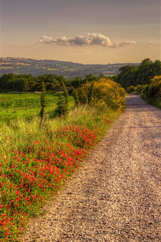 iPhone Wallpaper Italy, nature scenery, road, fields, trees, clouds, dusk