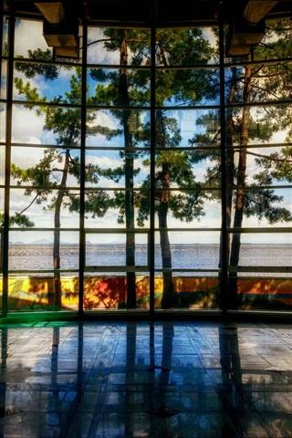 iPhone Wallpaper Museum, Yeosu, South Korea, trees, window