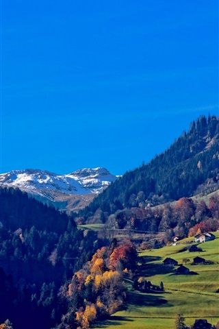 iPhone Wallpaper Switzerland, Alps, mountains, houses, trees, grass, blue sky