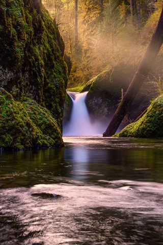 iPhone Wallpaper Waterfall in forest, creek, green, moss, trees, sun rays