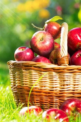 iPhone Wallpaper A basket apples, sun rays, grass