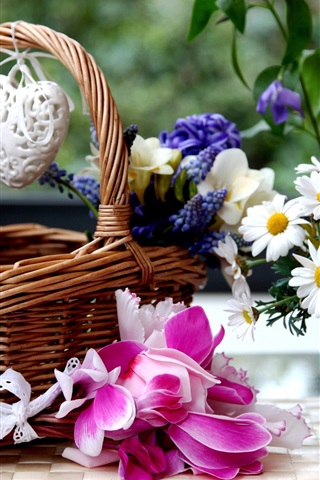 iPhone Wallpaper Basket, colorful flowers, freesia, hyacinths, chamomile, cyclamen