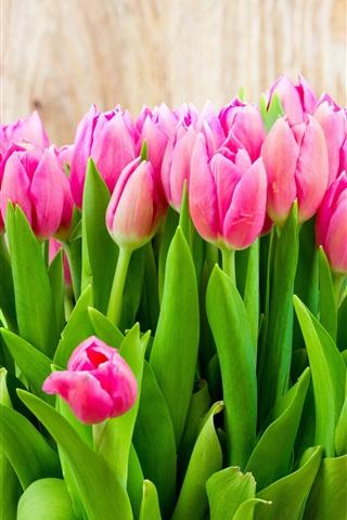 iPhone Wallpaper Beautiful pink tulip flowers bouquet