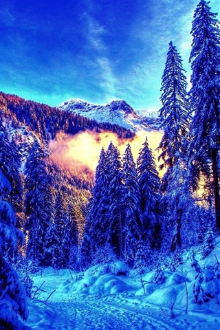 iPhone Wallpaper Beautiful winter, thick snow, mountain, trees, fog
